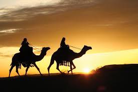 เที่ยวซาอุดิอาระเบีย แคมป์ทะเลทรายสถานที่ขี่อูฐ