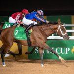 แข้งม้าที่แพงที่สุดในโลกของประเทศซาอุดีอาระเบีย